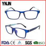 Рамка Eyeglasses Well-Designed логоса Китая изготовленный на заказ голубая (YJ-G52252)