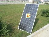 Mono панель солнечных батарей 150W (CNSDPV150 (36) M6-50/45)
