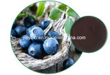 Hot Selling Anti-Oxidant Blueberry Extract Anthocyyanidins 5% ~ 35%; Pterostilbeno 1% -20%