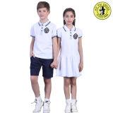 As camisas da farda da escola & as saias preliminares americanas, fardas da escola dos miúdos vendem por atacado