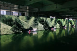 Écran polychrome de gros en gros du prix P8 RVB DEL de Foxgolden