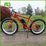 Bicicleta eléctrica/Ebike de la alta rueda de alta velocidad para la venta