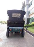 Veicolo turistico elettrico classico dell'automobile 5kw di golf di righe superiori dell'oggetto d'antiquariato 3