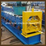Protezione d'acciaio del Ridge di colore che fa rullo che forma macchina (AF-R313)
