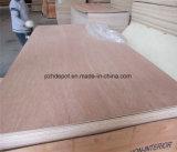 madera contrachapada del anuncio publicitario de los 3X6/4X8/5X10FT con base del álamo