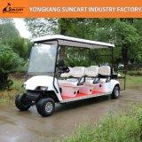 6+2人の電気ゴルフカート、8 Seater、後部フリップシートと、RyEz 802Dの小型観光バス