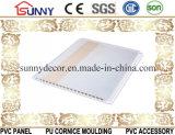 PVC 천장 Panel/PVC 벽 Panel/PVC 널을 인쇄하는 최신 각인 이동