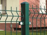 Escuro - cerca revestida do engranzamento de fio do pó verde