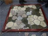 هيدروليّة حجارة دمع/صحافة آلة لأنّ حجارة قراميد ([ب80])