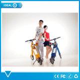 電気バイクの電気スクーターの電気マウンテンバイクを折るグリーン電力