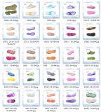 Ai Blazende Vorm voor de Schoenen van de Gelei van pvc, de Vorm van de Schoenen van de Douane van de Fabriek van China