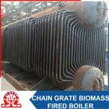 Pallina di legno, buccia del riso, caldaia a vapore infornata biomassa del combustibile della segatura