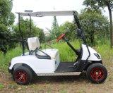 전기 골프 카트, 2 Sseat 의 순수한 전기, 48V 4kw 의 DC 모터, 오른손 드라이브 조타는, 모래 물통과 열 절연제 상자를 추가한다
