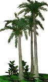 迫真性人工的なココヤシの木の木5メートルの