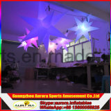 Estrella inflable/globo ligero inflable/luz inflable del LED
