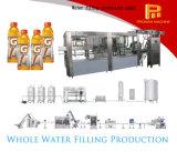 Hete het Vullen van de Drank van de Soorten van de Verkoop Automatische Tonische Apparatuur/Machine