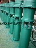pompes de puits profondes submersibles de l'eau de 6 \ 8 \ 10 pouces pour l'irrigation par égouttement