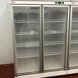 Doppelte Tür-Kühlvorrichtung schließen Kompressor-Gemischtwarenladen-Bildschirmanzeige-Kühlraum an