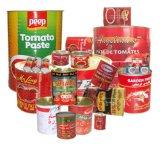 Aprontar para usar a pasta de tomate 800g do alimento enlatado