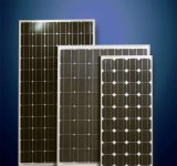 El panel solar polivinílico del picovoltio Haochang de la alta calidad polivinílica de la marca de fábrica para el sistema solo del soporte