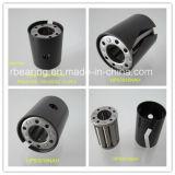Assemblee cilindriche lungamente rivettate 94112 del rullo e della gabbia della lastra del collare del rullo Bearings/No