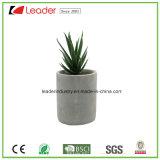Flowerpots decorativi del cemento con Artificiale-Succulente per gli ornamenti domestici del giardino e della decorazione