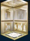 강철 건물에 의하여 사용되는 가정 전송자 엘리베이터