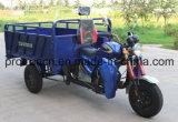 162 Fmjの新しい到着のMotoの貨物三輪車
