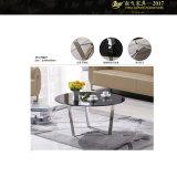 現代円形の小さいガラスコーヒーテーブルの鉄のコーヒーテーブル(YF-170084T)