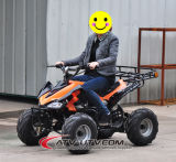 Bike квада Drived электрический ATV вала 800W & 1000W 48V с безщеточным мотором