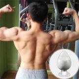 Wettelijke Veilige Sarm Reeks Gw501516 (gsk-516, Endurobol) voor Bodybuilding