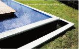 Tegel van het Mozaïek van het Zwembad de Ceramische (fysc48-2)