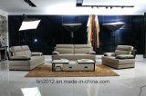 Sofá de couro moderno (SBO-3961)