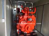 générateur de biogaz de générateur de gaz naturel de 100kVA 80kw Cummins