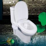 세륨 증명서 2016 새로운 디자인 화장실 Bidet NMB1000