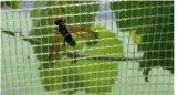 Anti reticolato di plastica della grandine per l'agricoltura
