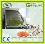Dehydratatietoestel van het Voedsel van het roestvrij staal het Industriële