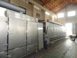 Máquina de secagem Multilayer de correia transportadora para o produto de Agricuture