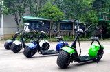 Un motorino elettrico poco costoso delle 2 rotelle con Ce (JY-ES005)