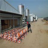 Het duurzame Geprefabriceerde Huis van de Landbouw van het Gevogelte van de Structuur van het Staal