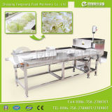 Вырезывание шпината салата капусты большого диапазона Gd-586 Vegetable отрезая Shredding резальная машина