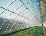 Polycarbonat-festes Blatt-Gewächshaus-Dach-Abstellgleis-Polycarbonat-Panel