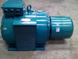 Motores assíncronos 3-Phase do ano (IP23) com rotor de ferida (H160-400)