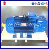 Tipo assíncrono do motor e tensão AC 220V/380V/415V/460V motor de 3 fases