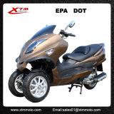Scooter comique de la mobilité 300cc Trike d'adultes de gaz de la Chine EPA