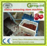 Vástago asombroso de la cereza que quita la máquina, máquina de proceso de la cereza/de fruta