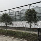 2016 최신 판매 상업적인 농업 유리제 온실
