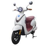 Bici eléctrica de la alta calidad 48V20ah con los pedales