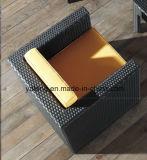 Софа комнаты дешевой софы сада высокого качества цены напольной установленная живущий установила Single&Double Софой (YT195)