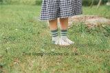 좋은 보는 아이들 면은 다채로운 면에게서 한 소녀 줄무늬 면 양말을 친다